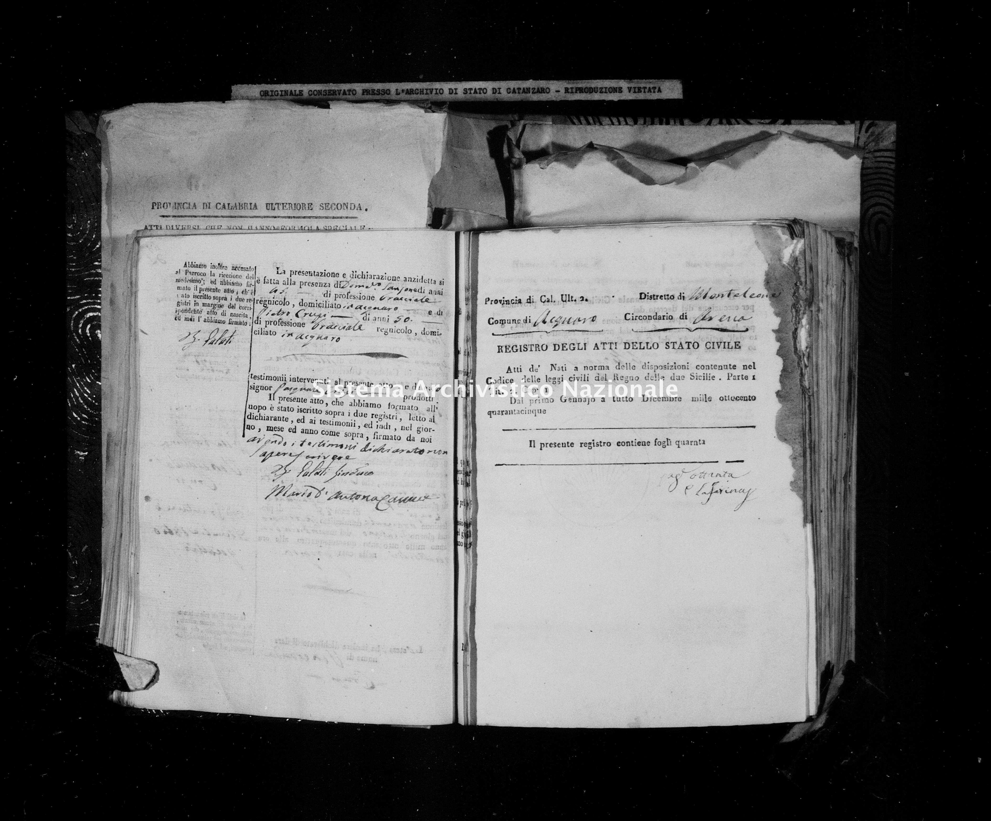 Archivio di stato di Catanzaro - Stato civile della restaurazione - Acquaro - Nati - 1845 -