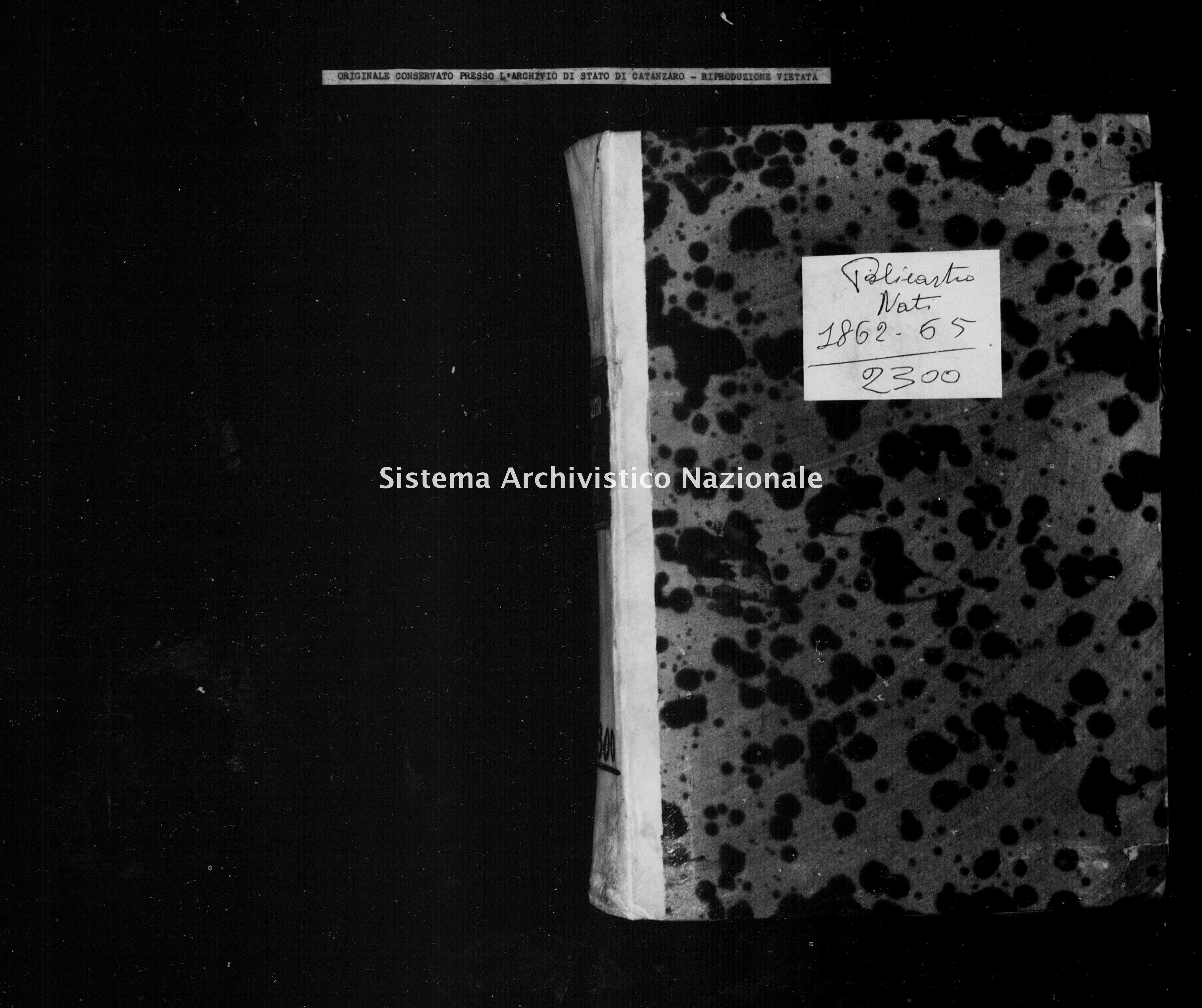 Archivio di stato di Catanzaro - Stato civile italiano - Petilia Policastro - Nati - 1862 - 2300 -