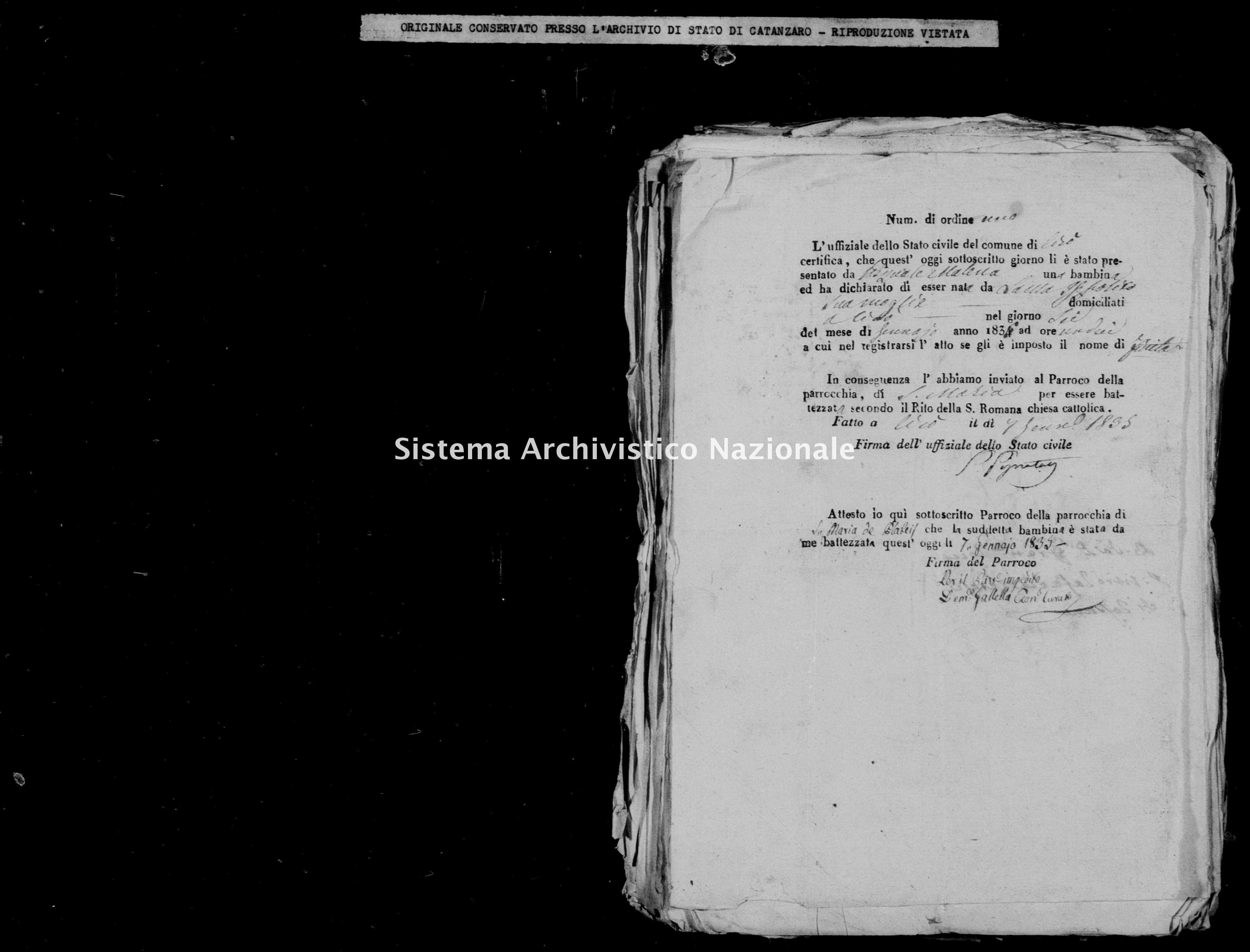 Archivio di stato di Catanzaro - Stato civile della restaurazione - Cirò - Nati, battesimi - 1835 -
