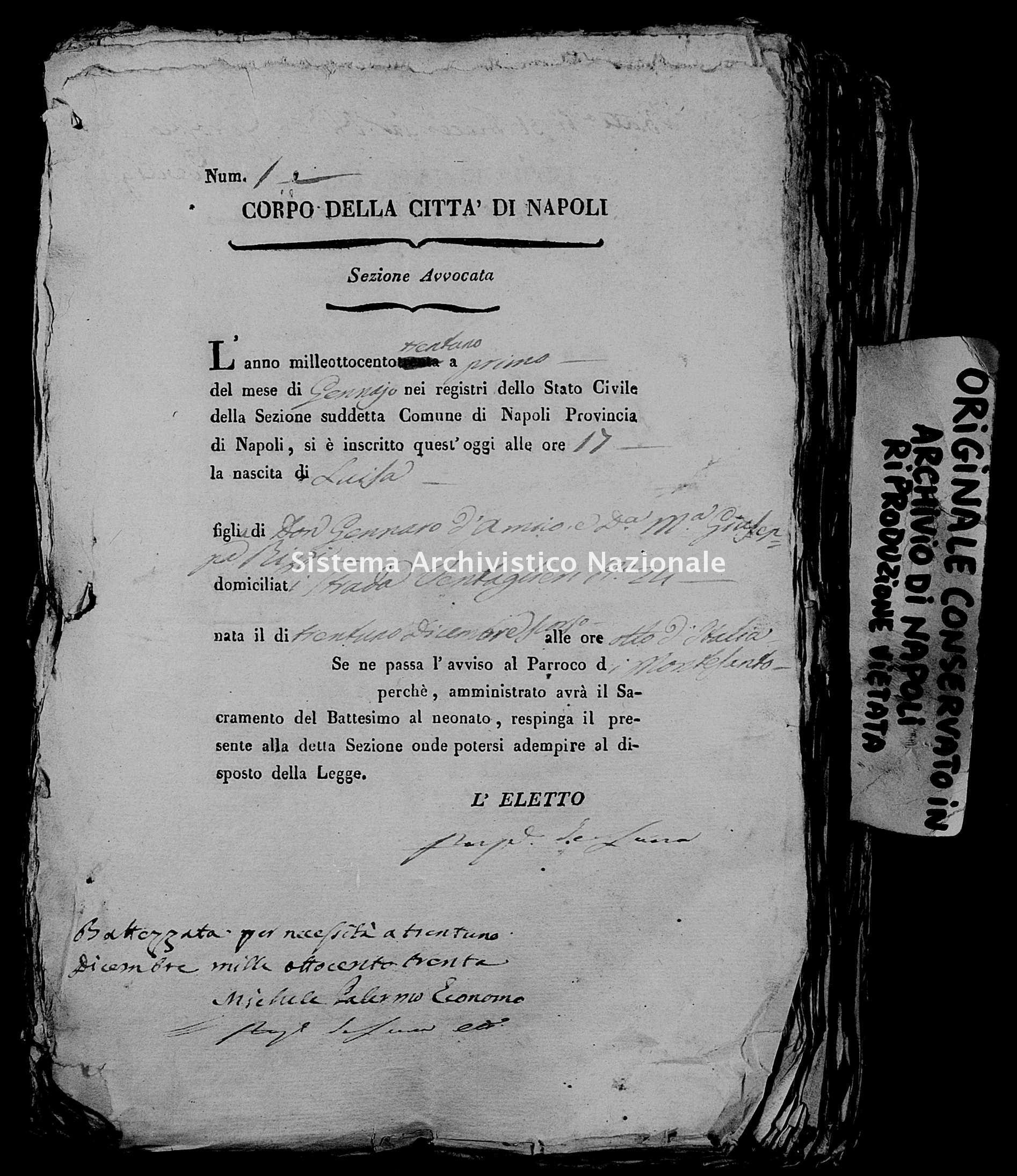Archivio di stato di Napoli - Stato civile della restaurazione - Avvocata - Nati, battesimi - 01/01/1831-17/12/1831 -