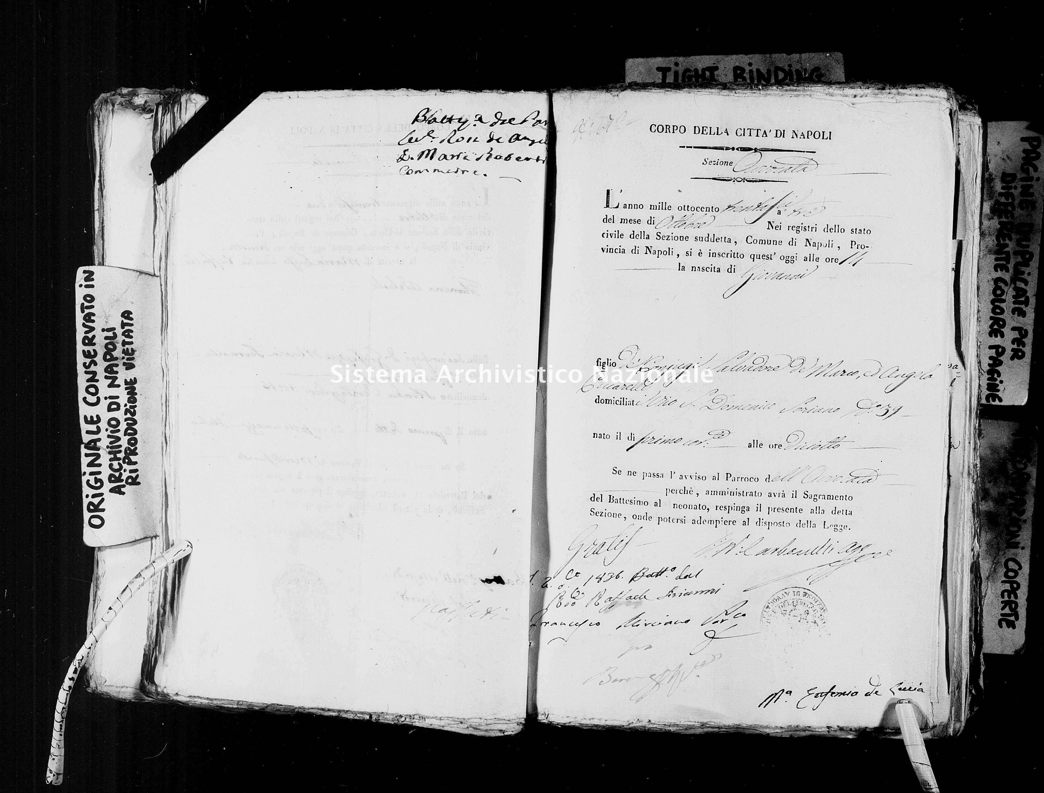 Archivio di stato di Napoli - Stato civile della restaurazione - Avvocata - Nati, battesimi - 03/10/1836-31/12/1836 -