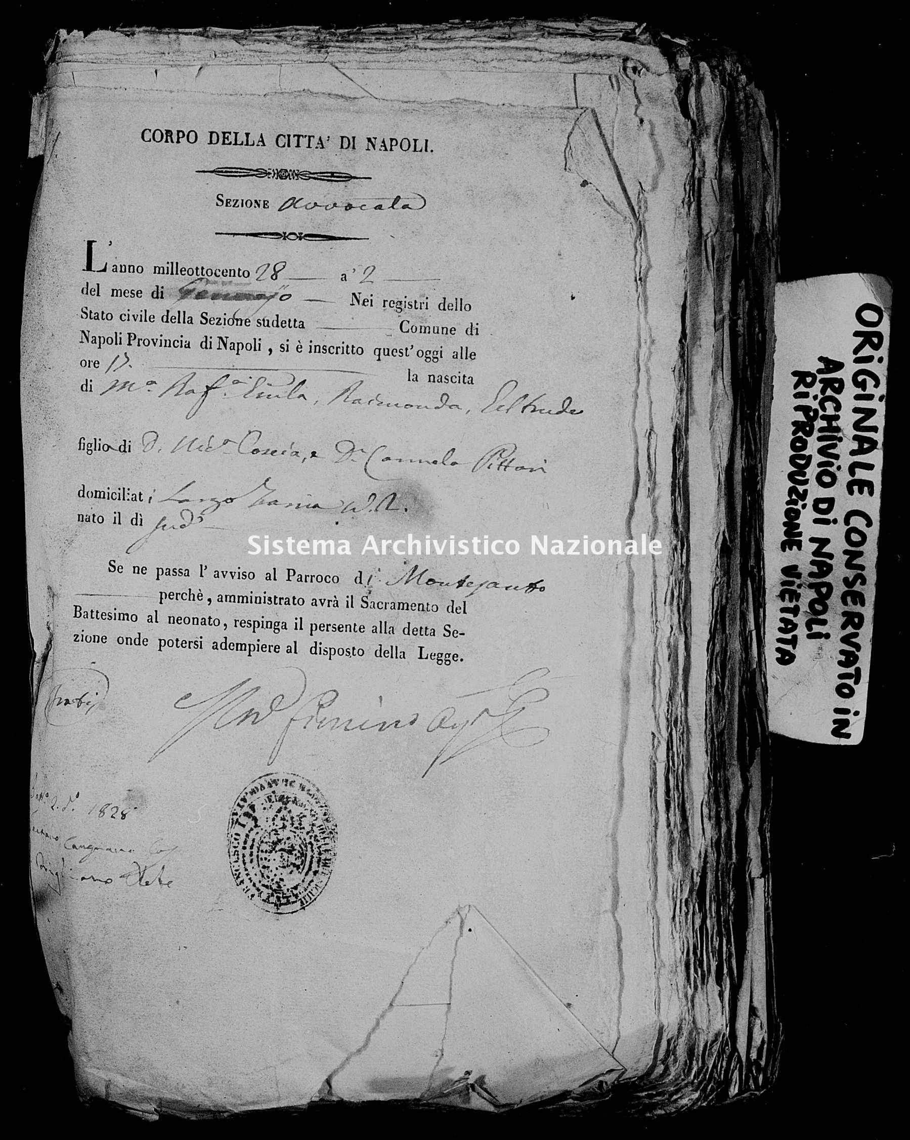Archivio di stato di Napoli - Stato civile della restaurazione - Avvocata - Nati, battesimi - 1828 -