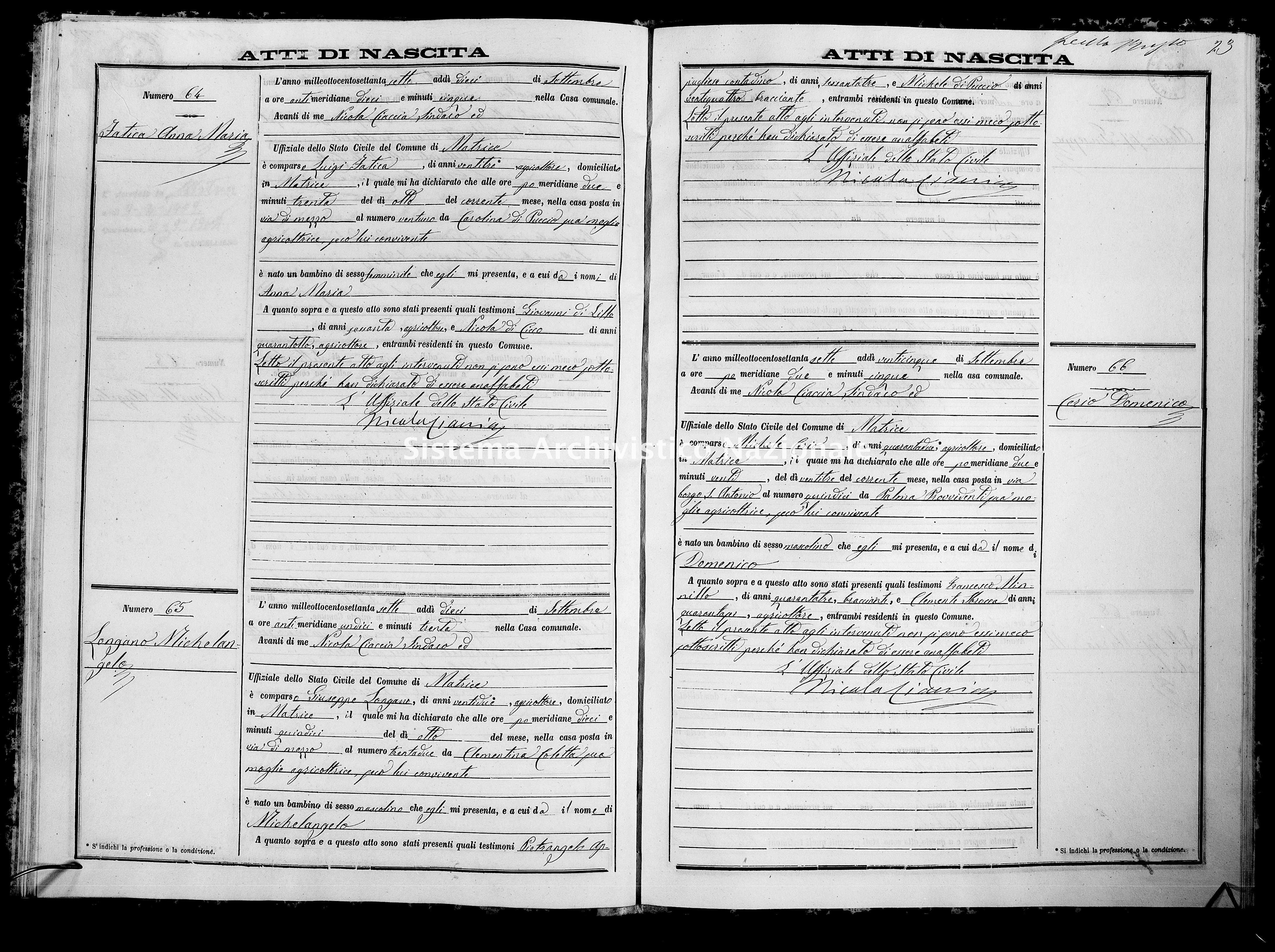 Archivio di stato di Campobasso - Stato civile italiano - Matrice - Nati - 1877 -