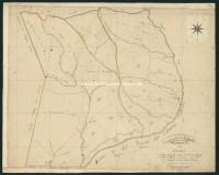 Archivio di Stato di Grosseto - Antico Catasto Toscano - Capalbio - Sezione Z - Foglio 3 - 186_Z03I
