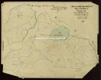 Archivio di Stato di Arezzo - Catasto particellare - CASTIGLION FIBOCCHI - Mappe - Attivazione - A/1 - 131_A01A
