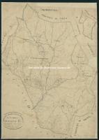 Archivio di Stato di Arezzo - Catasto particellare - CASTIGLION FIBOCCHI - Mappe - Impianto - B/1 (3) - 131_B01I