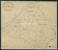 Archivio di Stato di Arezzo - Catasto particellare - CASTIGLION FIBOCCHI - Mappe - Impianto - D/1 (6) - 131_D01I