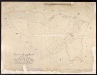 Archivio di Stato di Firenze - Catasto Generale Toscano - Mappe - Bagno a Ripoli - 54 - 019_E02R