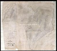Archivio di Stato di Firenze - Catasto Generale Toscano - Mappe - Castelfioretino - 105 - 207_A02I