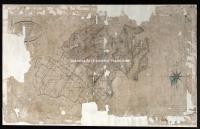 Archivio di Stato di Firenze - Catasto Generale Toscano - Mappe - Quadri Unione - 43 - 365QUF1