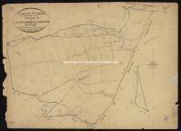 Archivio di Stato di Livorno - ASLi, Catasto mappe, 118 - 050_A03I