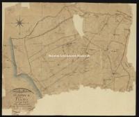 Archivio di Stato di Livorno - ASLi, Catasto mappe, 1259 - 318_G02I