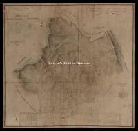 Archivio di Stato di Massa - Catasto di Maria Beatrice - 1940502I