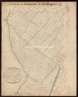 Archivio di Stato di Massa - Catasto Borbonico - 236_A12I