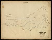 Archivio di Stato di Pisa - Catasto terreni - Mappe - Calcinaia - 10 - 042_C01A