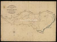 Archivio di Stato di Pisa - Catasto terreni - Mappe - Chianni - 16 - 110_D02I