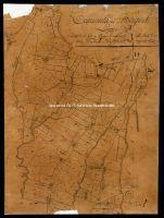 Archivio di Stato di Firenze - Deputazione sopra il Catasto e Archivi annessi - Lucidi - Borgo San Lorenzo - Sezione I - Foglio 1 - 033_I01L