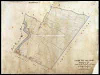 Archivio di Stato di Firenze - Catasto Generale Toscano - Mappe - Campi Bisenzio - 27 - 048_D03A