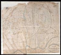 Archivio di Stato di Firenze - Catasto Generale Toscano - Mappe - Castelfioretino - 14 - 086_D01I