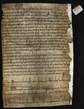 Archivio di Stato di Firenze, Diplomatico, 1104 Novembre 25, Riformagioni A. P.
