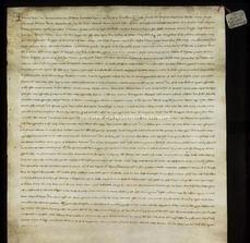 Archivio di Stato di Firenze, Diplomatico, 1229 Marzo 19, Riformagioni A. P.