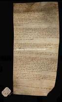 Archivio di Stato di Firenze, Diplomatico, 1255 Maggio 30, Riformagioni Atti Pubblici