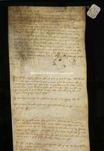 Archivio di Stato di Firenze, Diplomatico, 1255 Giugno 8, Rifromagioni Atti Pubblici
