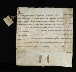 Archivio di Stato di Firenze, Diplomatico, 1220 Maggio 27, Volterra