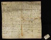 Archivio di Stato di Firenze, Diplomatico, 1224 Febbraio 1, Riformagioni A. P.