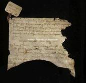 Archivio di Stato di Firenze, Diplomatico, 126. Marzo 31, Regio Acquisto Caprini