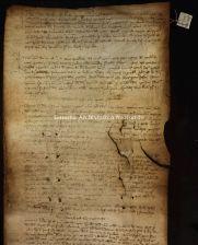 Archivio di Stato di Firenze, Diplomatico, 1336 Dicembre 9, Monte Comune