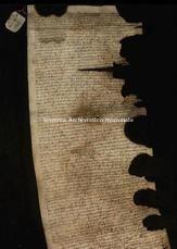 Archivio di Stato di Firenze, Diplomatico, 1346 .. .., Famiglia Ricci