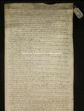 Archivio di Stato di Firenze, Diplomatico, 1347 Settembre 29, Pavi