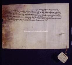 Archivio di Stato di Firenze, Diplomatico, 1381 Agosto 21, Riformagioni A.P.