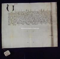 Archivio di Stato di Firenze, Diplomatico, 1388 Luglio 21, Riformagioni A.P.