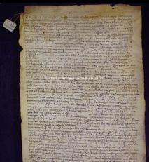 Archivio di Stato di Firenze, Diplomatico, 1396 Maggio 4, Ricci