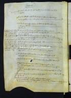 00001.01008 - Archivio di Stato di Perugia - Comune di Perugia - Catasti - Primo gruppo - Registro 1 - Allibramento 1009, intestatario Petrus Iohannis