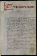 00001.00014 - Archivio di Stato di Perugia - Comune di Perugia - Catasti - Secondo gruppo - Registro 1 - Allibramento 14, intestatario Lionetto, Giulio e Martino de Prospero de Martino-23marzo1571