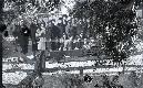 Archivio di Stato di Bergamo, Ispettorato provinciale dellalimentazione, Ispettorato provinciale dellagricoltura, Schedario fotografico dellex Servizio provinciale Foreste e Alimentazione, 2: Gite distruzione, 1_2-106