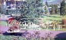 Archivio di Stato di Bergamo, Ispettorato provinciale dellalimentazione, Ispettorato provinciale dellagricoltura, Schedario fotografico dellex Servizio provinciale Foreste e Alimentazione, 4.2: Agricoltura - manifestazioni, 1_4.2-069
