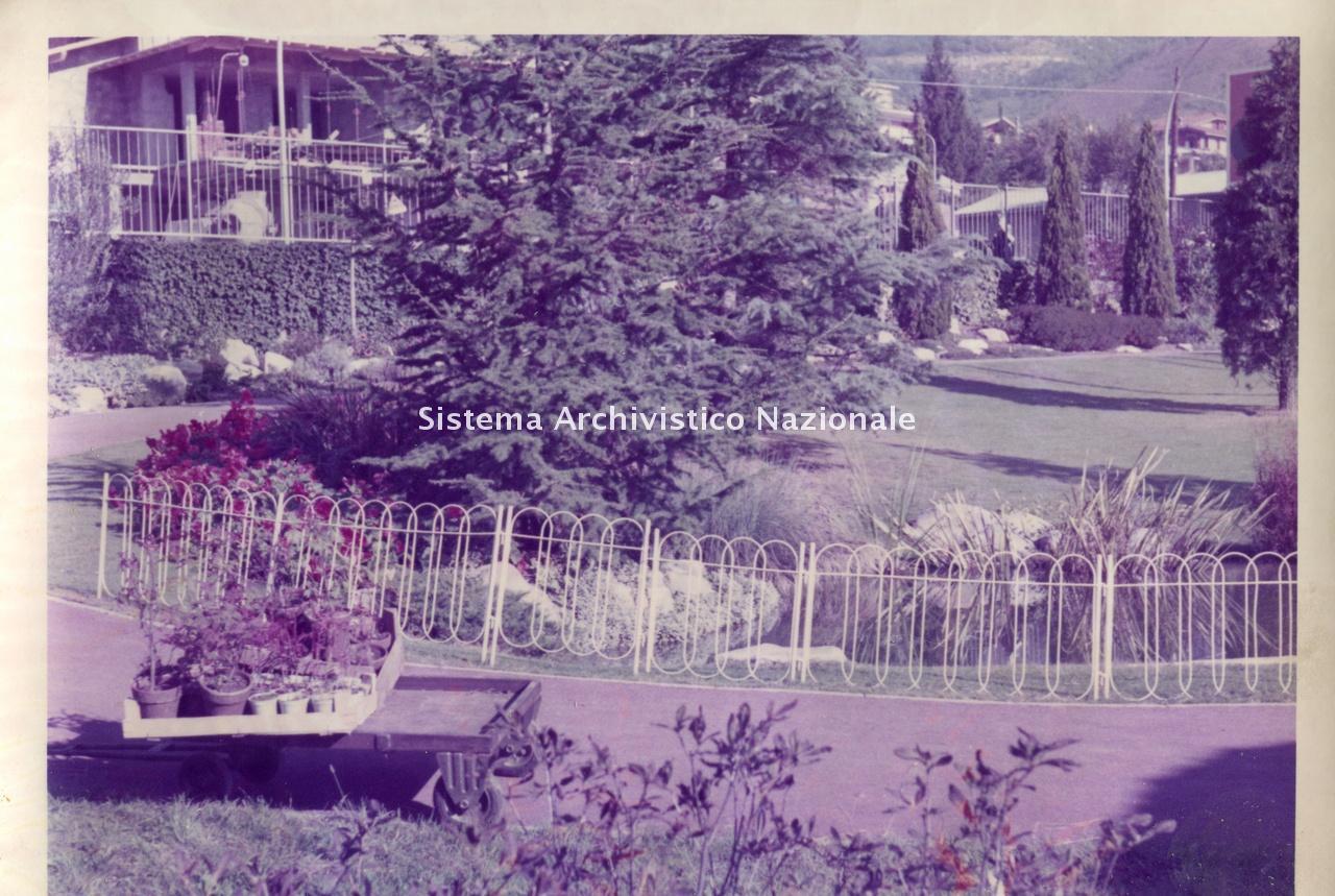 Archivio di Stato di Bergamo, Ispettorato provinciale dell'alimentazione, Ispettorato provinciale dell'agricoltura, Schedario fotografico dell'ex Servizio provinciale Foreste e Alimentazione, 4.2: Agricoltura - manifestazioni, 1_4.2-071