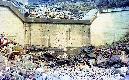 Archivio di Stato di Bergamo, Ispettorato provinciale dellalimentazione, Ispettorato provinciale dellagricoltura, Schedario fotografico dellex Servizio provinciale Foreste e Alimentazione (1961/1983),4.3: Agricoltura - calamità, ---, 2_4.3-078