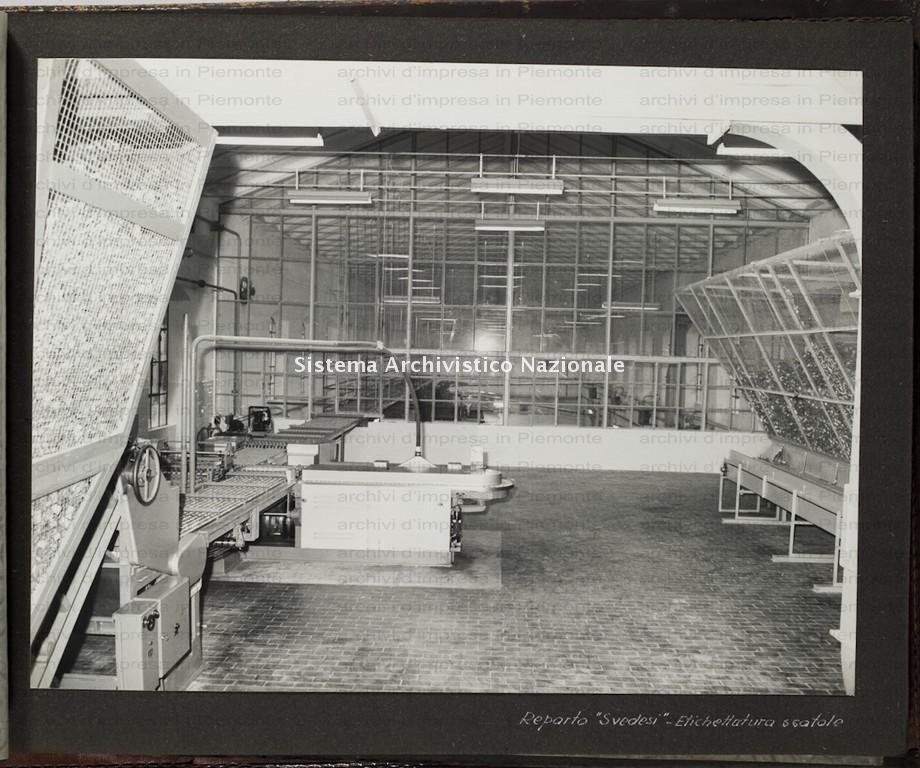 Lavaggi, stabilimento di Putignano Pisano, 1964