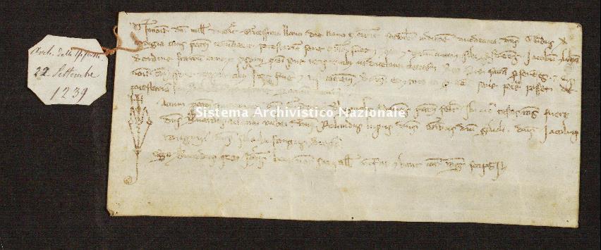 637. Archivio di Stato di SIENA, Diplomatico, Diplomatico Riformagioni, Pergamena 0639 - 1239 settembre 22, casella 67