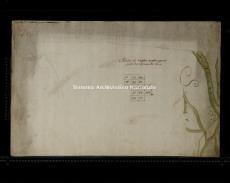 Archivio di Stato di Milano, ALLEGATO DI RETTIFICA DEL COMUNE CENSUARIO DI ABBIATEGRASSO (PORZIONE), Segnatura: 3001 - 3, Mappa: 5, Foglio: 1 (id: 170707)